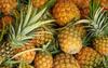 AKP Sudan'da ananas yetiştirecek!