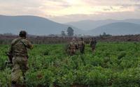 Afrin'de bir köy daha kurtarıldı