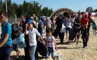 360 bin Suriyeli ülkesine döndü