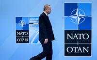 İdlib saldırısı ile tekrar gündeme gelen NATO Anlaşmasının 5'inci maddesi ne diyor?