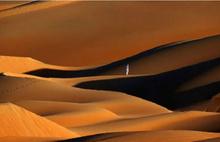 Arabistan bir zamanlar ormandı