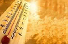 Şubat ayında rekor sıcaklık