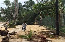 Irma Kasırgası, Survivor'ı vurdu