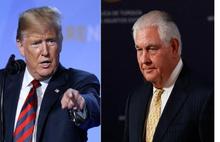 Trump: Bir kaya kadar aptaldı