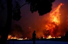 Komşu'da büyük yangın faciası
