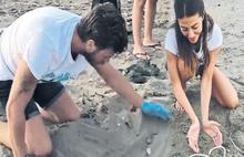 Kıvanç Tatlıtuğ 64 kaplumbağa kurtardı
