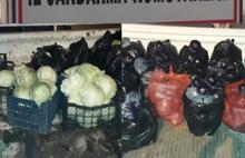 Bursa'da sebze hırsızları yakalandı