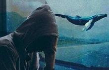 Gürer: Mavi Balina belasını yok edin