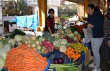 7 bin ton sebze meyve çöpe gidecek