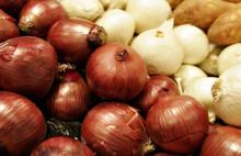 Patates ve soğan için önemli karar