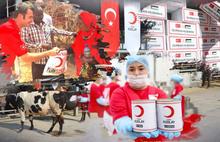 Kızılay'da kurban bağışı skandalı