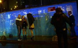 İstanbul'da yılbaşı gecesi terör saldırısı