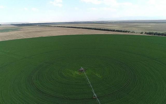 Hazine arazileri çiftçilere kiralanacak