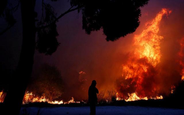 Soyer yangındaki acı tabloyu açıkladı